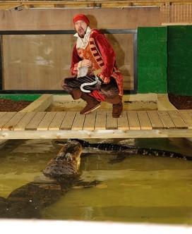 Captain Hook and Crocodile